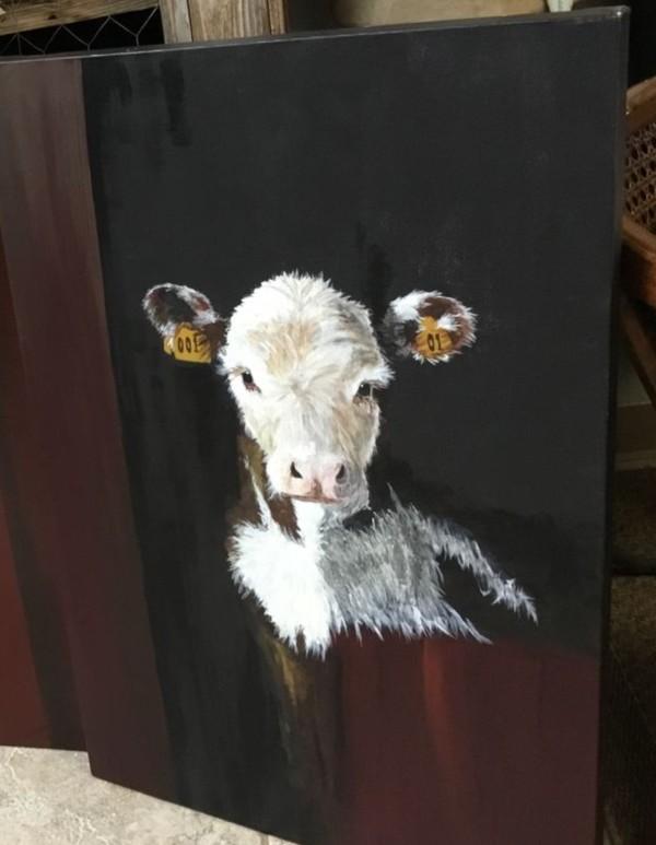 Cattle - Mama's Boy by Ann A Blake