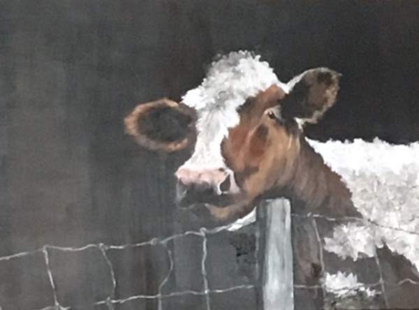 Cattle - Mrs. Harrison by Ann A Blake