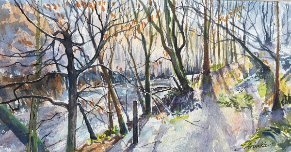 Calderglen Walk by Julie Arbuckle