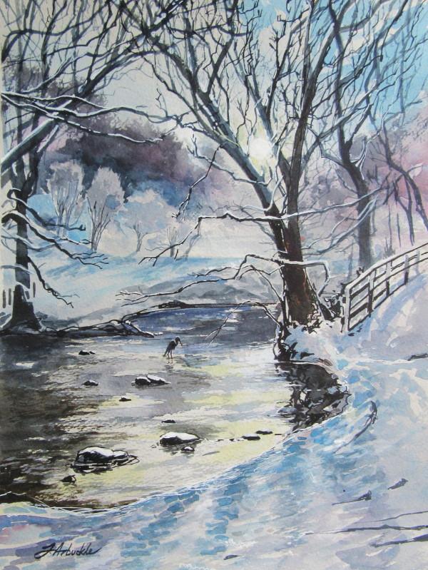 Calderglen near Horseshoe Falls by Julie Arbuckle