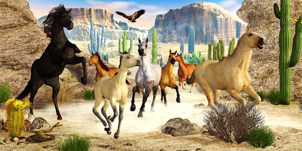 Desert Horses by Peter J Sucy Digital Arts