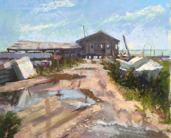 Abandoned by Nancy Tankersley