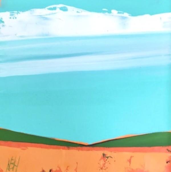 Orange Fields, by Nancy B. Hartley