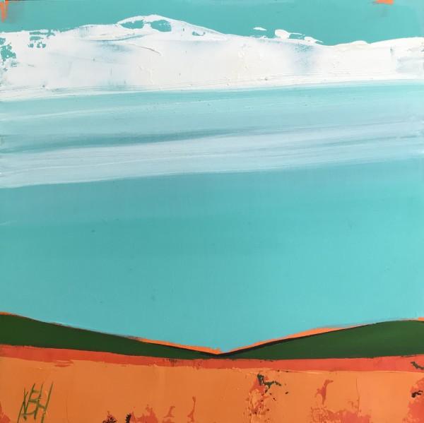 Desert Dreams by Nancy B. Hartley