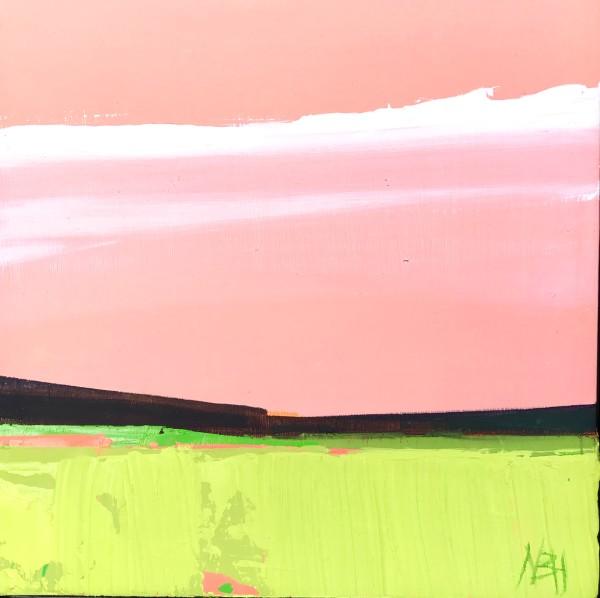 Apricot Sky by Nancy B. Hartley