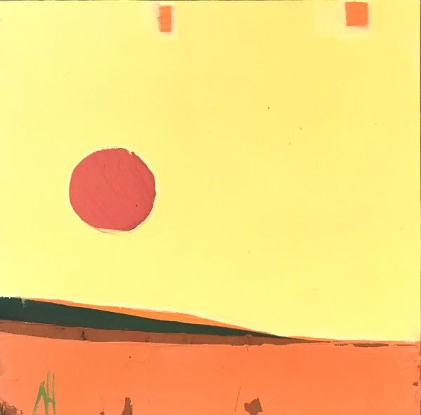 Citrus Orange by Nancy B. Hartley