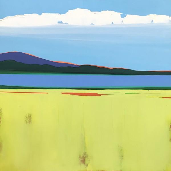 Summer Love by Nancy B. Hartley
