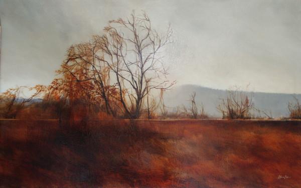 TREE II by Charlie Hunter