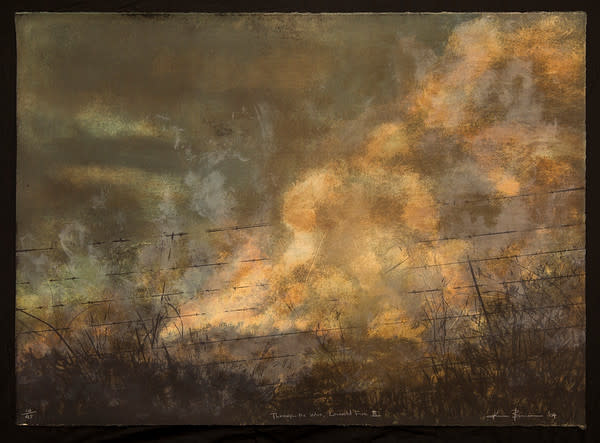 Through the Wire Lowveld Fire I by Kim Berman