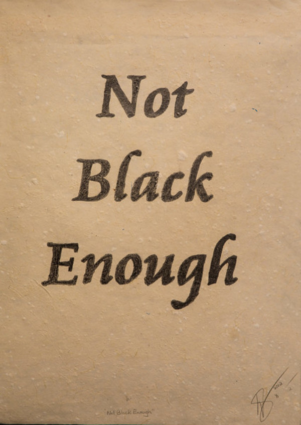 Not Black Enough by Donna Brown