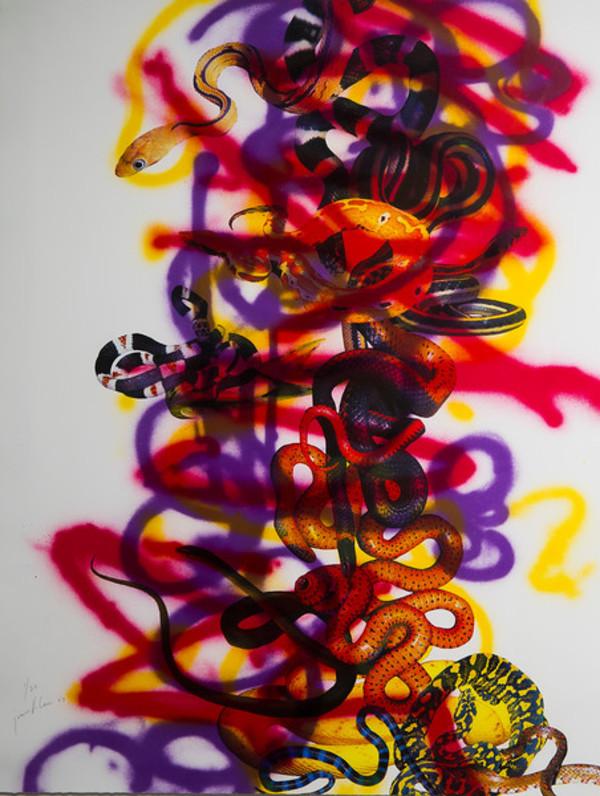 Splendid Splenetic Spit Stills by Jeanette Louie