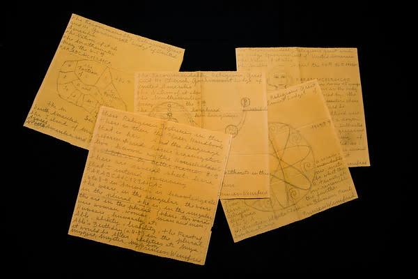 Asylum Manuscripts, 1949-1968 by Princess Winifred
