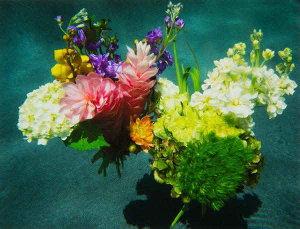 From the Flora Aquatilis Series Flora Aquatilis #7 by Kenda North