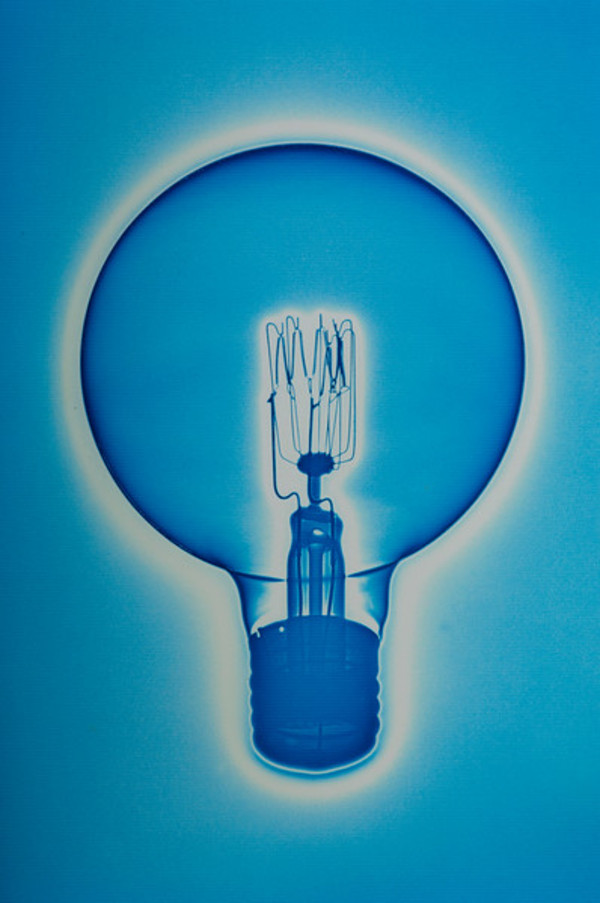 Light Bulb by Sheila Pinkel