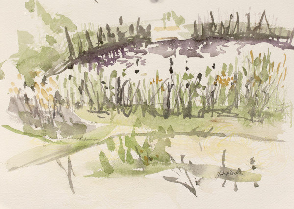 Snake Pond Late Summer. by Lesley A. Powell