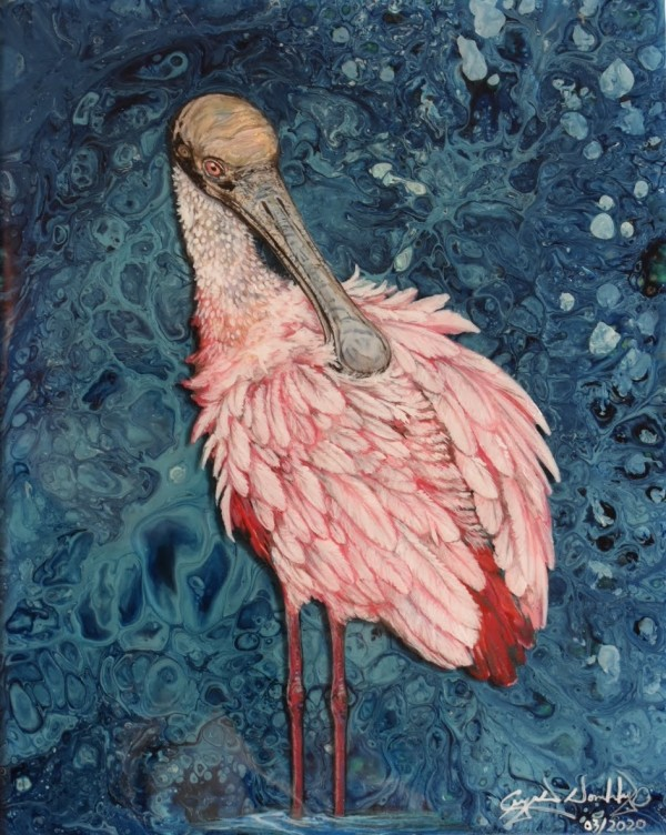 Blue Waters Spoonbill by Crystal Dombrosky