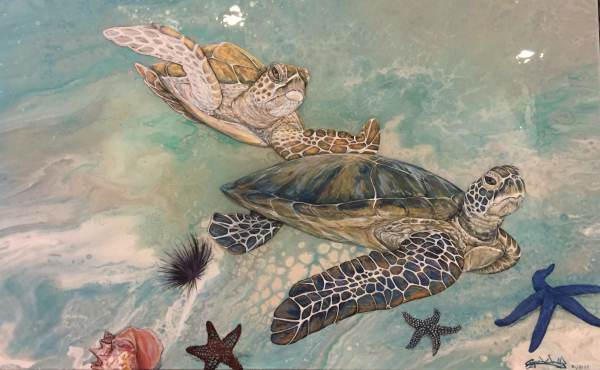 Surfs up Turtle Cove by Crystal Dombrosky