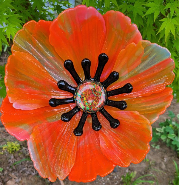 Garden Flower-Orange/Opaline Streaky with Black Stamens and Dichroic Center by Kathy Kollenburn