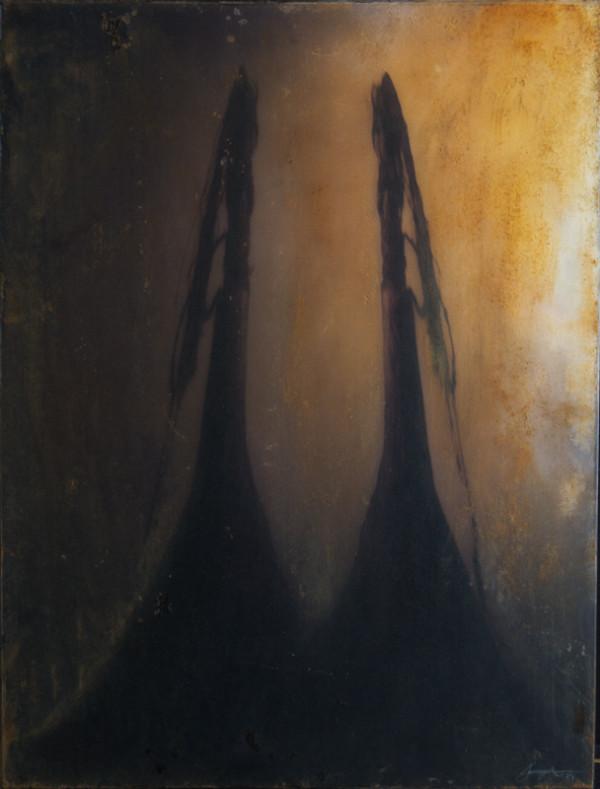 Lumina Lumen  XII by Brenda Stumpf