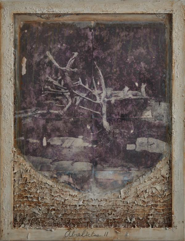 Abrelictus ll by Brenda Stumpf