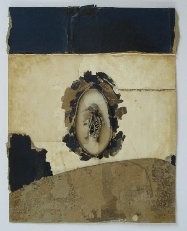 Bones (Death) by Brenda Stumpf