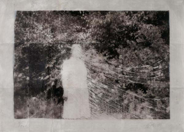 Vanish by Brenda Stumpf