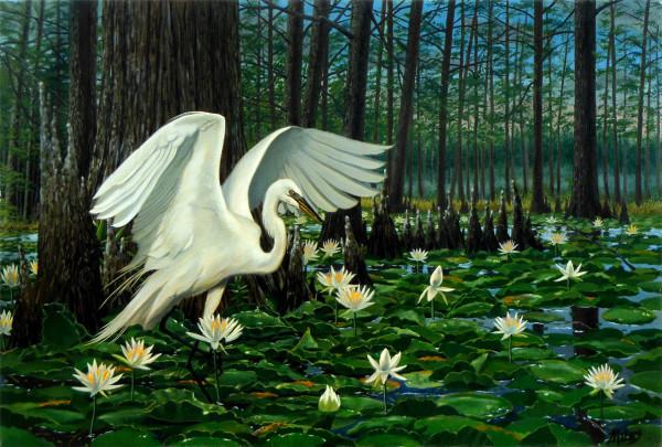 Great Egret by Kevin D. Miles Schaefer/Miles Fine Art