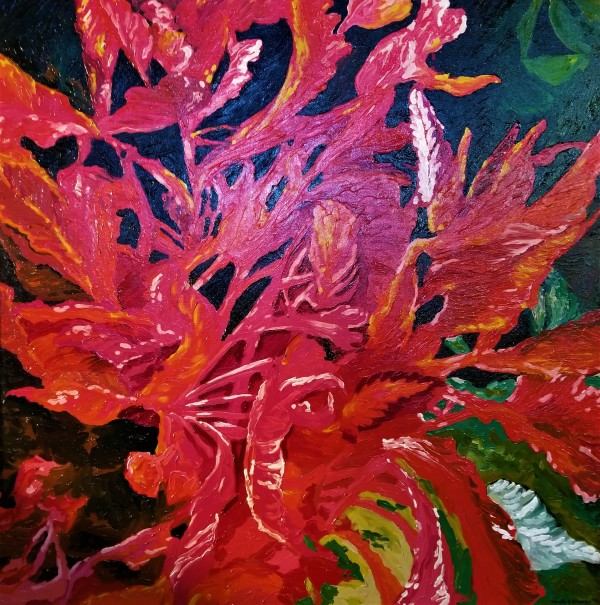 Amaranthus by Wendy S Schaefer Miles