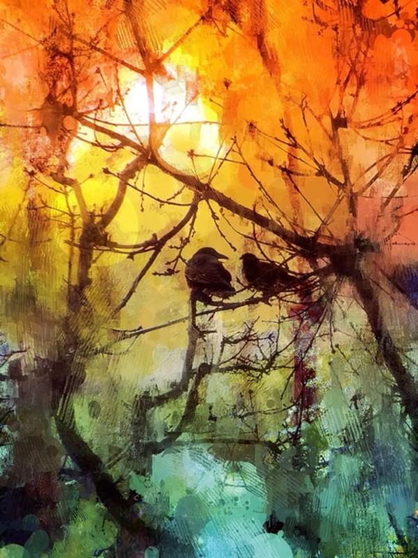 Soul Mates by Tony Bounsall