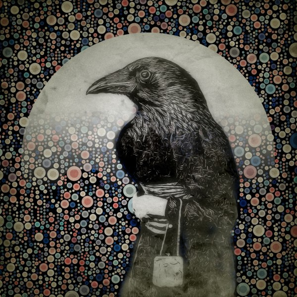 Old Crow by Tony Bounsall
