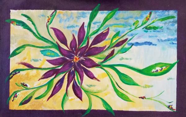 Purple Anemone by M Shane