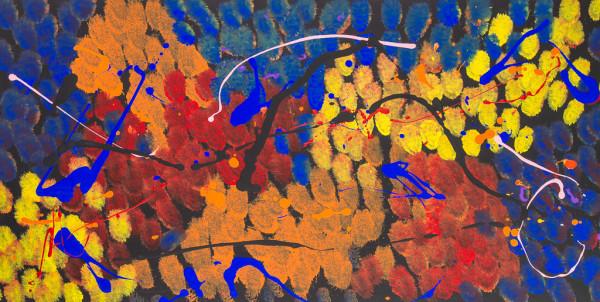 Autumn Stream by M Shane