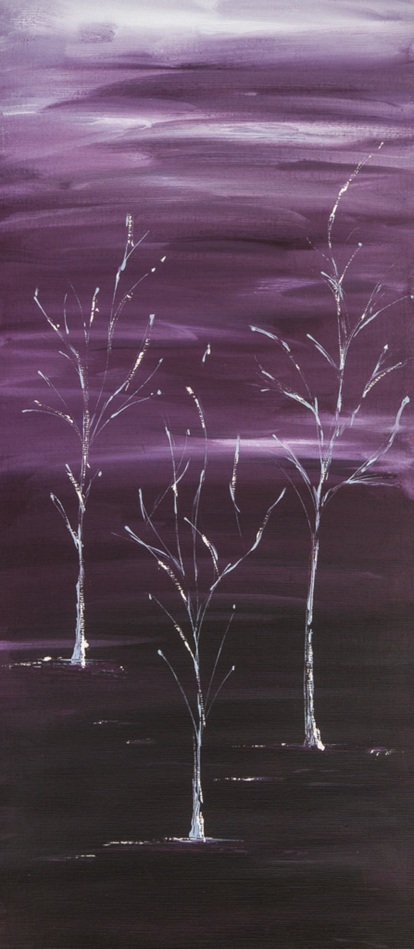 Winter Trees by M Shane