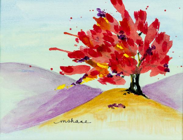 Raspberry Tree 1 by M Shane