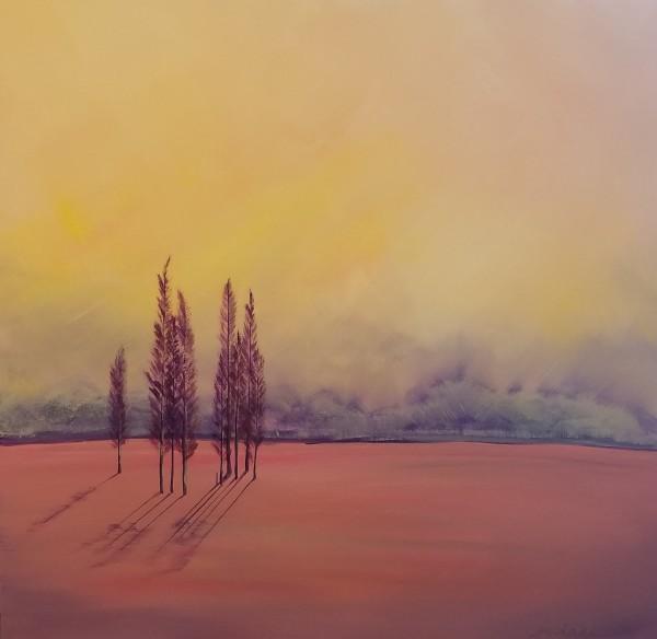 La Vista del Paradiso by M Shane