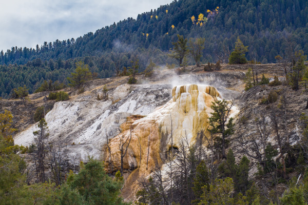Mammoth Hot Springs 2 by E Wand