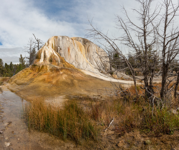 Mammoth Hot Springs 1 by E Wand