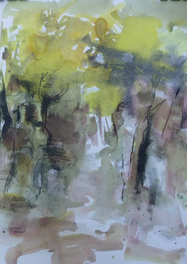 Wattle Walk by Lyn Laver-Ahmat