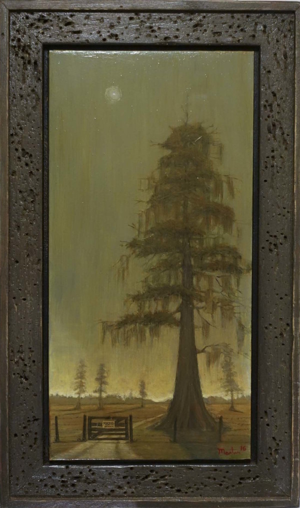 Cypress Tree on Grand Bois  by Leslie  Martin
