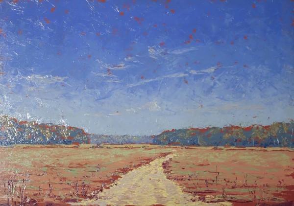 Hope Farm Road 3 by Leslie  Martin