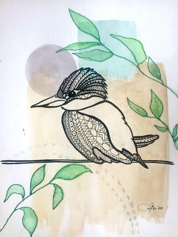 Anja Studer的翠鸟