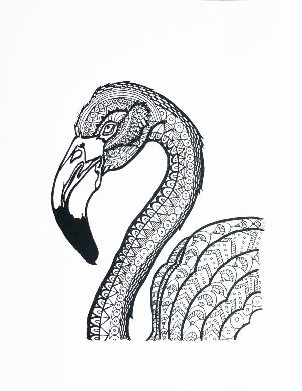 Anja Studer的火烈鸟