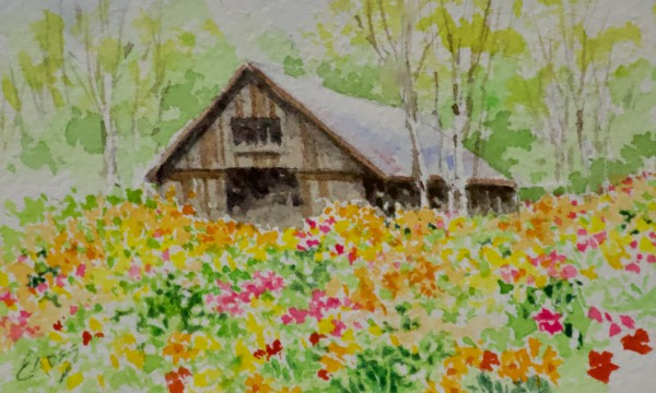 Barnyard Wildflowers by Linda Eades Blackburn