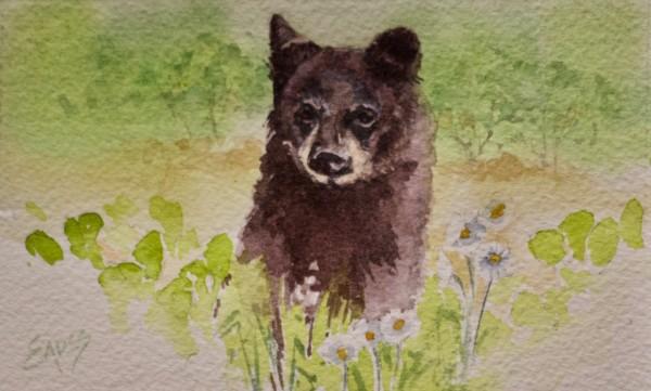 Bearly Spring by Linda Eades Blackburn