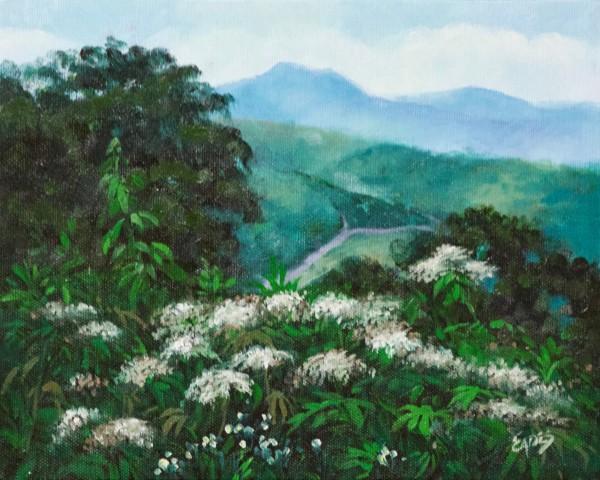Blue Ridge Summer by Linda Eades Blackburn