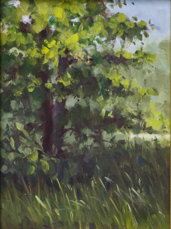 Blue Ridge, GA Retreat by Linda Eades Blackburn