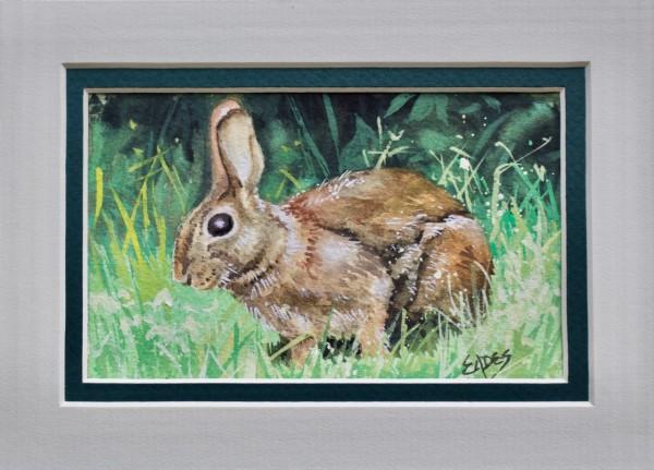 Brown Bunny by Linda Eades Blackburn