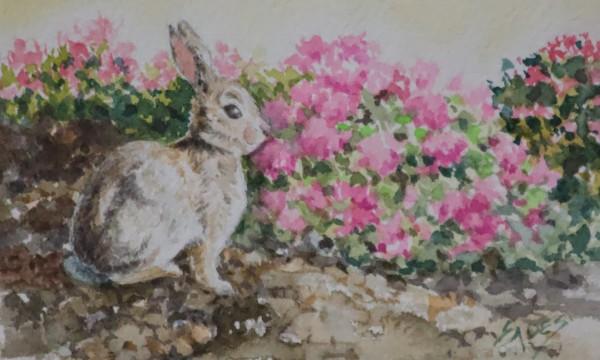 Bunny in the Garden by Linda Eades Blackburn