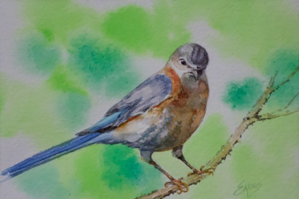 Early Bird by Linda Eades Blackburn