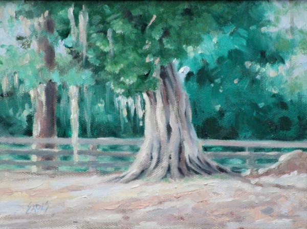 Eden's Cedar by Linda Eades Blackburn